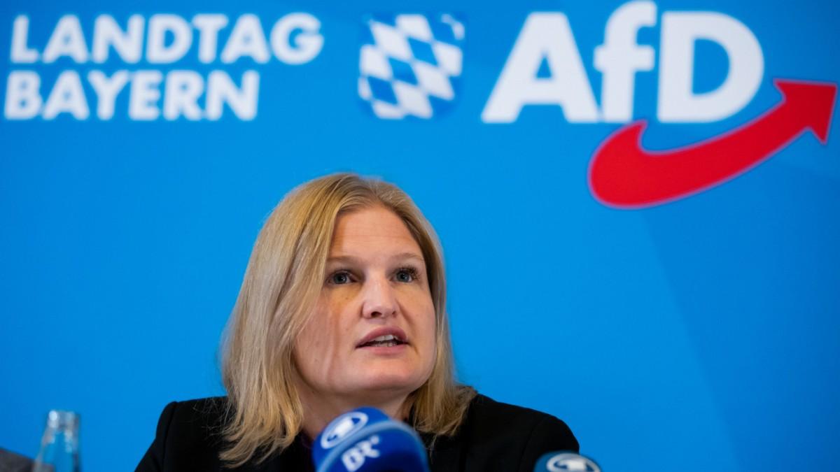 AfD Bayern - Spott über Klimastreiks von Schülern