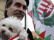 ngarn, Jobbik, Reuters