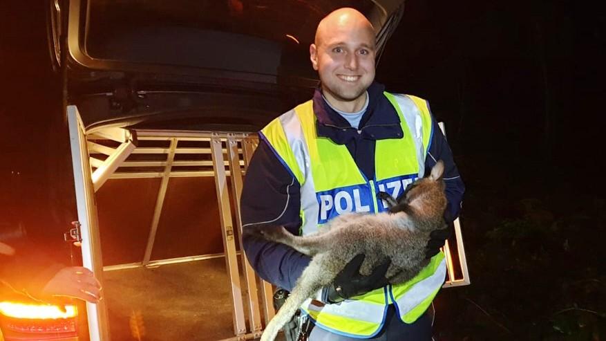 Xanten: Polizei schnappt Känguru