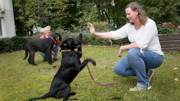 Tierlernstatt der Arbeiterwohlfahrt/Anderwerk, Schwanseestraße 16. In dem Beschäftigungsprojekt  werden künftig Autisten unter Anleitung von Hundetrainern und Sozialpädagogen  eine Hundetagesbetreuung bieten.