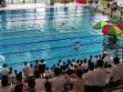 Demokratie-Protest beim Schwimmen (Vorschaubild)