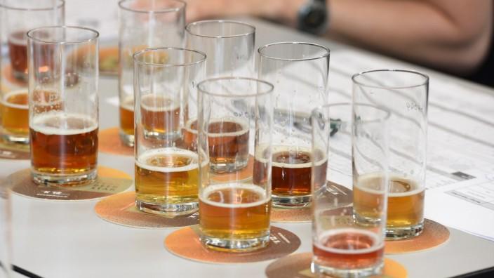 """Die Tester beim """"Beer Star"""" bewerten Geruch, Farbe, Schaum, Klarheit und natürlich den Geschmack der Biere."""