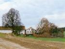 grün kaputt018