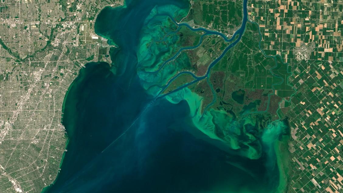 Klimawandel: Explosionsartige Vermehrung von Algen