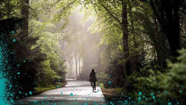 Ein Radfahrer mit Licht faehrt bei Nebel durch den Tiergarten in Berlin 17 05 2019 Berlin Deutsch