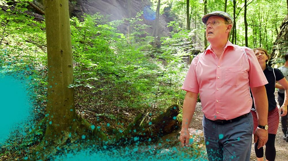 Landtagswahl Thüringen: Wahlkampf im Wald