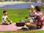 Die Sims 3, EA