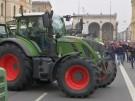 """Landwirtin: """"Politik ist gegen uns"""" (Vorschaubild)"""