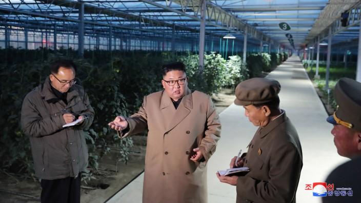 Machthaber von Nordkorea besucht Gemüsefarm