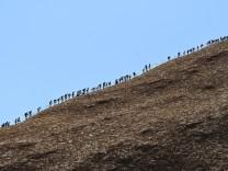 Tourists climb Uluru, formerly known as Ayers Rock, at Uluru-Kata Tjuta National Park in the Northern Territory