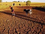 Klimawandel, Erderwärmung, ap
