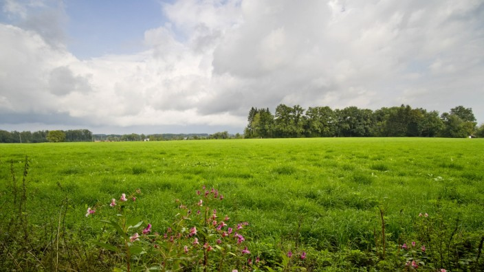 Grundstück für Berufsschulzentrum Ebersberg