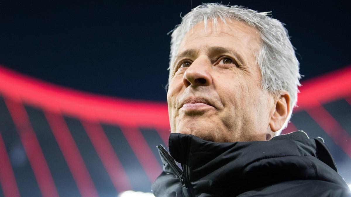 BVB in der Bundesliga: Der Fluch der Samtpfötigkeit