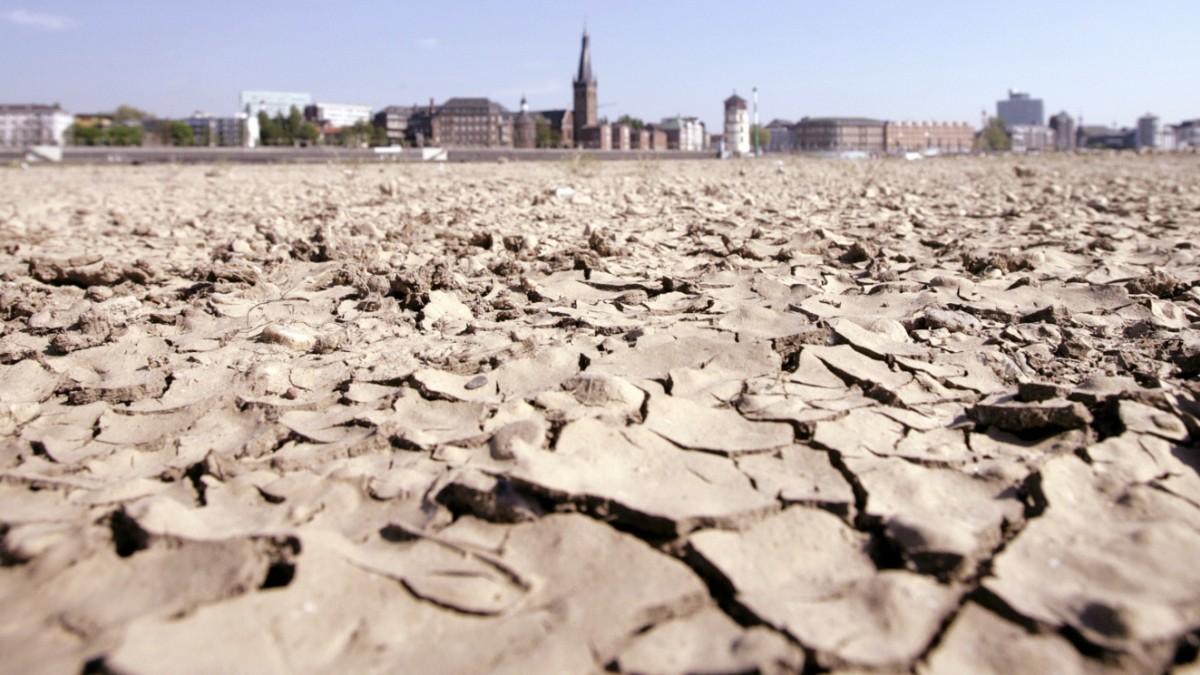 Klima-Bericht: Tausende Tote wegen Hitzewellen