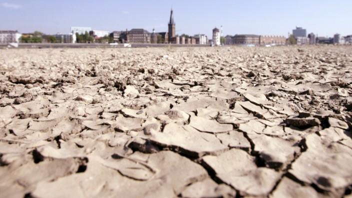 Klima-Statistiken: 2019 war das wärmste Jahr in Europa