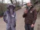 """Elefantenbaby wurde in Halle auf Namen """"Elani"""" getauft (Vorschaubild)"""