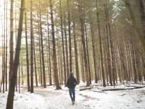Ein Wanderer geht durch einen winterlichen Wald.