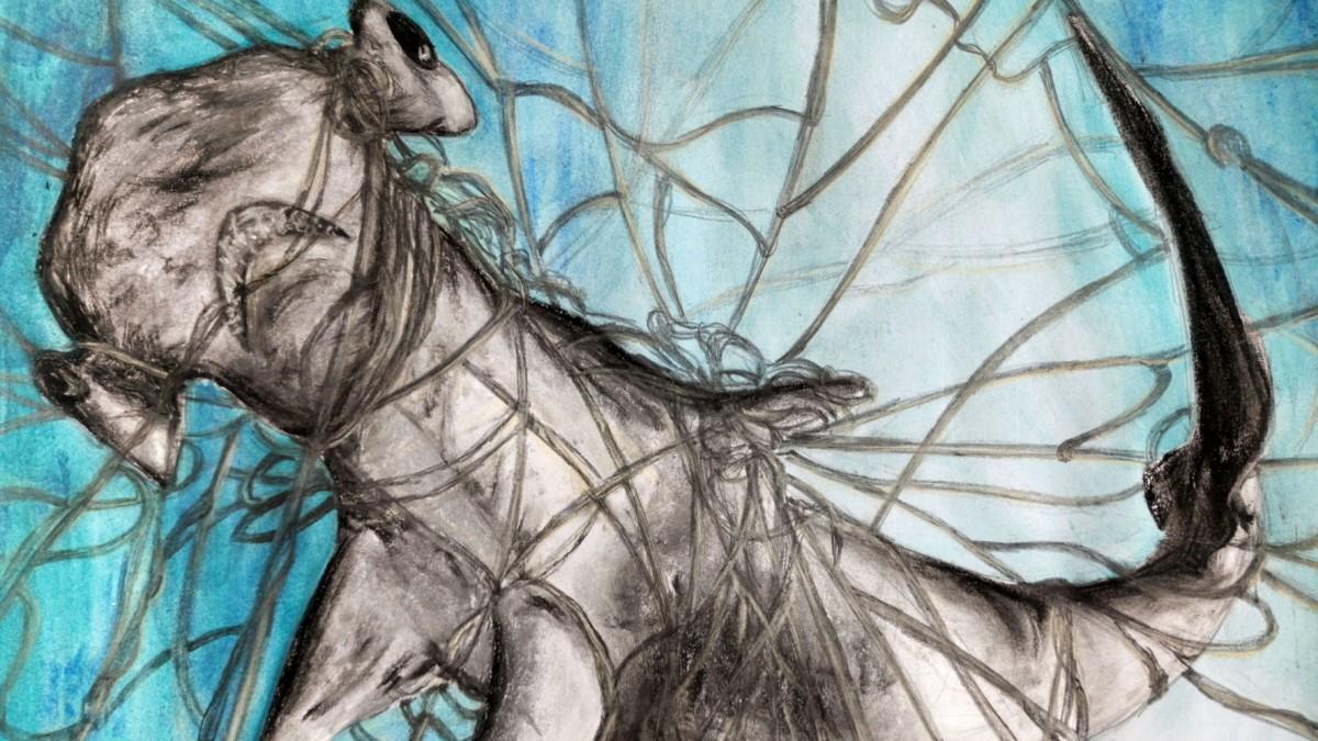 Treibnetze und schmelzendes Polareis