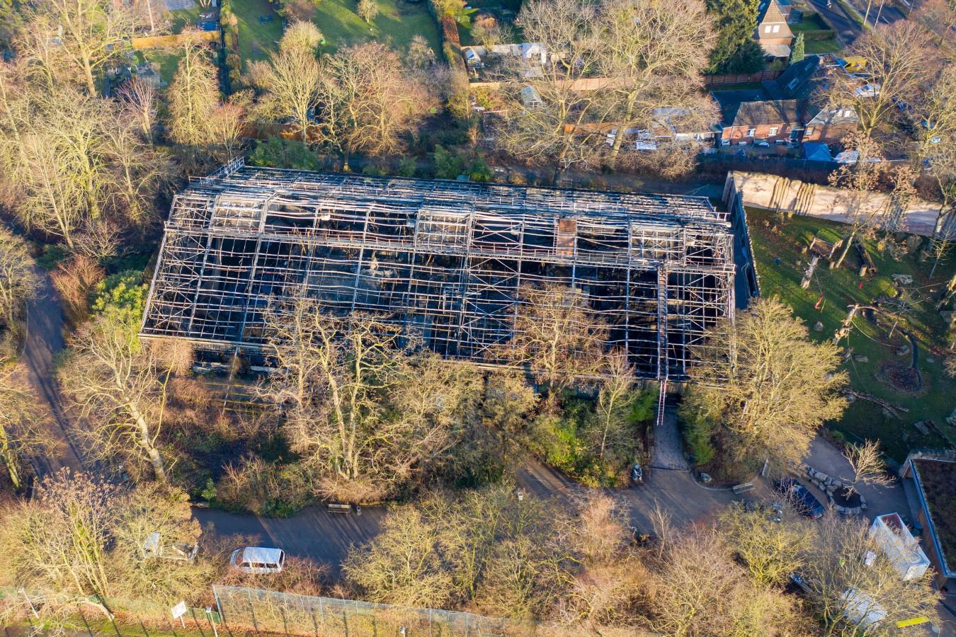 Incendio en el zoológico de Krefeld