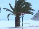 """Neun Tote: Sturmtief""""Gloria"""" verwüstet Spanien (Vorschaubild)"""