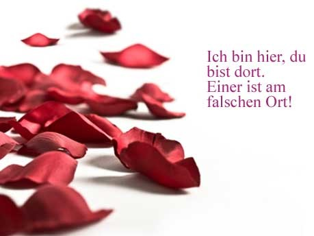 Zum Valentinstag Heiße Liebesschwüre Der Leser