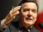 Inspiration aus den USA, Schröder wünscht türkischstämmigen Minister, ddp