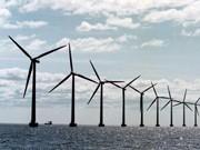 Öko-Industrie Umweltschutz schafft Jobs wie nie ddp