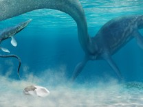 Mosasaurier legt Ei
