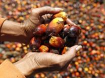 Palmölfabrik in Indonesien