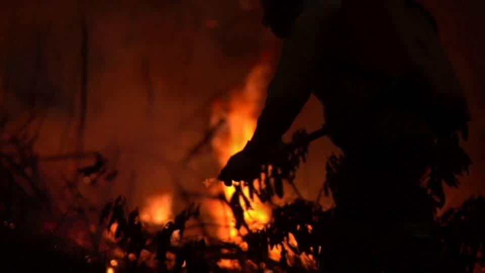Bolsonaro redet Brände im Amazonas klein