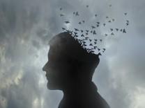Kopf eines Mannes löst sich auf in einen wegfliegenden Vogelschwarm PUBLICATIONxINxGERxSUIxAUTxONLY GaryxWaters 1159114