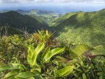 Morne Trois Pitons Nationalpark Landschaft im Morne Trois Pitons Nationalpark und die Ostküste von Dominica, Karibik, Mi