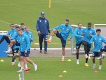 Trainer David Wagner (FC Schalke 04), hinten mit Newuzugang Vedad Ibisevic (Schalke 04), re. 03.09.2020, Fussball GER, S