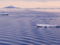 Antarctic Peninsula Erebus and Terror Gulf Ice floe among water ripples generated by passing ship