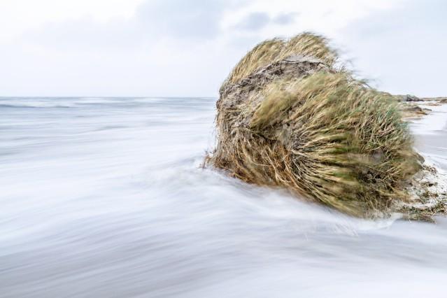 Wunderwelt Wattenmeer von Martin Stock und Tim Schröder