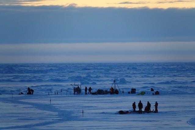 """´Mosaic""""-Expedition in der Arktis"""