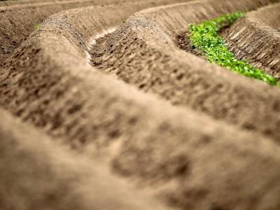 Ökologie: Raus aus dem Teufelskreis
