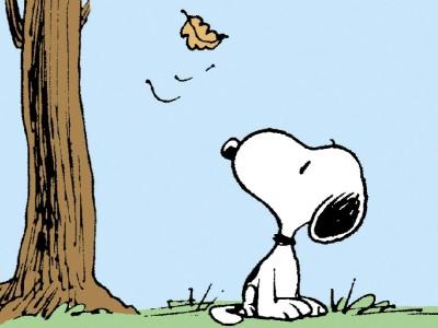 Dilbert, Peanuts & Co.: Ein ewiger Kreislauf