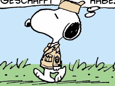Dilbert, Peanuts & Co.: Neidische Veteranen