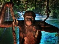 Paläoanthropologie: Doch kein Frühaufsteher?