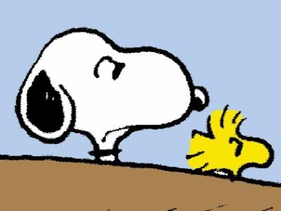 Dilbert, Peanuts & Co.: Die Zeichen des Kometen