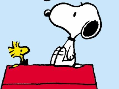 Dilbert, Peanuts und Co.: Gemeine Fragen