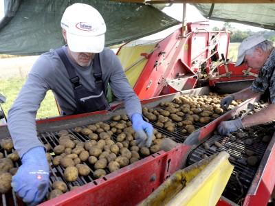 Freisinger Campus unterstützt Bauern: Mit Omas Rezept auf den Markt