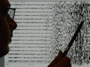 Seismograph, ddp