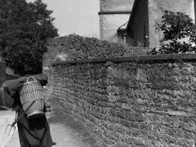 """Rezension: """"Pippins Tochters Taschentuch"""": Wo die Nazis großwerden konnten"""