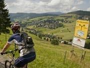 Mountainbike-Runde um den Feldberg, Rochau