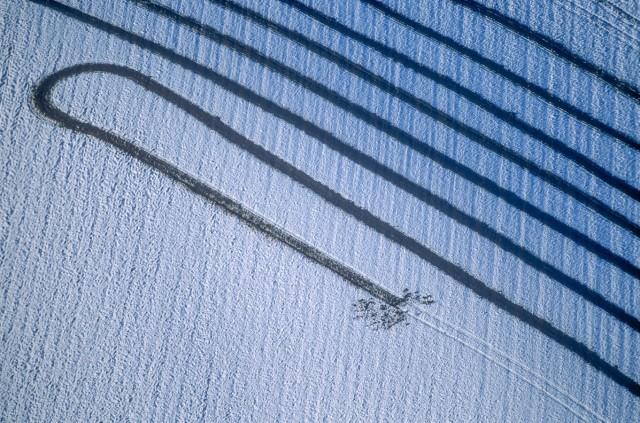 Luftaufnahme von den Spuren, die ein Landwirt mit seinem Miststreuer auf dem verschneiten Acker hinterlassen hat