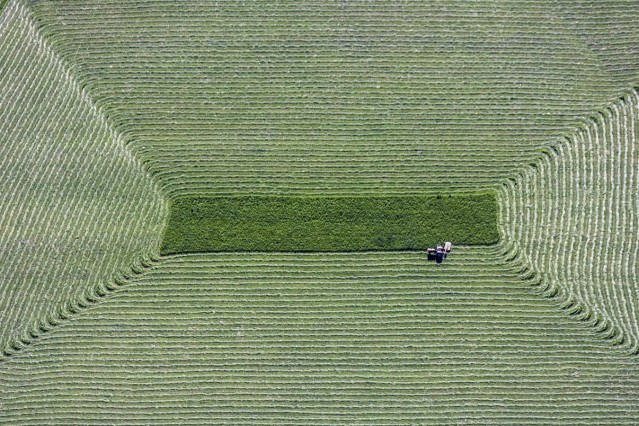 Luftaufnahme von einem Traktor mit Mähwerk, der gerade eine Wiese abmäht