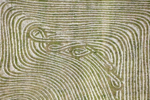 Luftaufnahme von Spuren des Landwirtes bei der Wiesenmahd