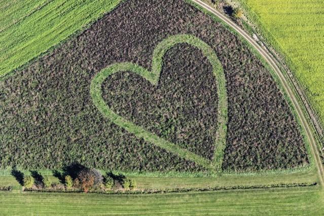 Luftaufnahme von einem Herz im Acker, bis zum 01.06.2019 über 2,8 Millionen mal aufgerufen bei https://www.flickr.com/photos/leidorf/6265579314